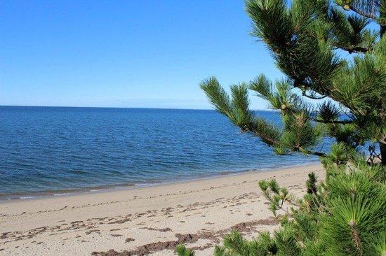 Lis Sur Mer: Beach