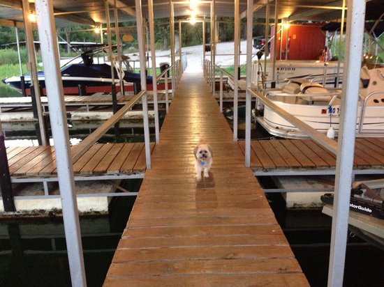 Cedar Wood Resort: Well lit, camera protected boat dock