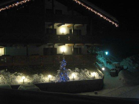 Wellness Hotel Fontana : ancora l'albero di notte