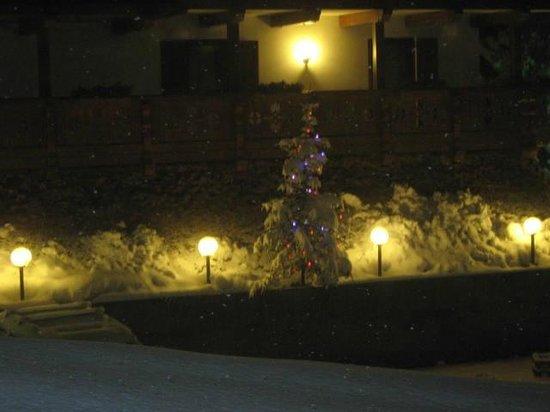 Wellness Hotel Fontana : albero di natale di notte