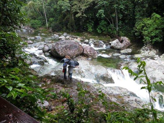 The Lodge and Spa at Pico Bonito: Guided Hiking