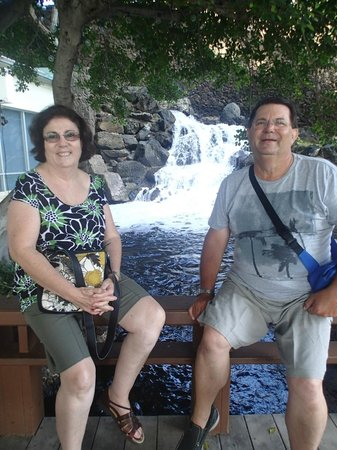 The Kahala Hotel & Resort: Sitting on bridge with waterfull in background near dolphin quest.