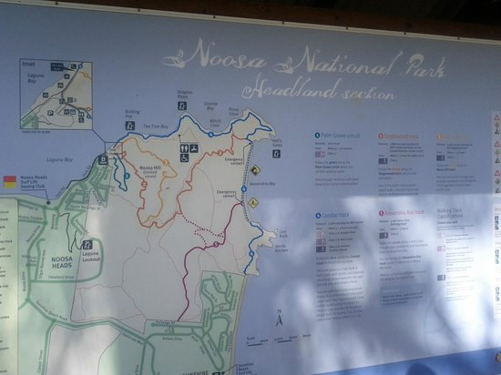 Noosa National Park: Map of walking paths