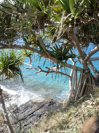 Noosa National Park: Beautiful blue ocean