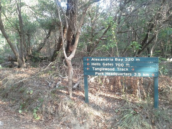 Noosa National Park: Walking track signage