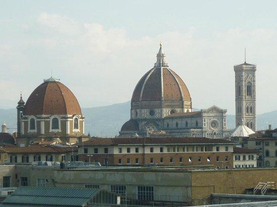 Delle Nazioni Hotel : Esta impresionante foto de la catedral de Florencia la tomé desde la terraza de nuestra habitaci