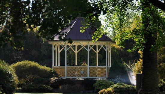 Clifton Motel: Botanical gardens