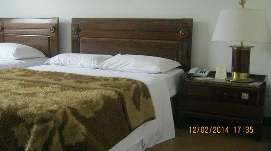 Tropical Manaus Ecoresort : Dentro do quarto