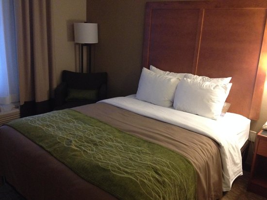 Comfort Inn & Suites: Full sized bed