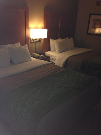 Comfort Inn & Suites : Updated modern bedding