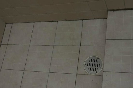 Hotel Julamis : MOLD IN SHOWER AND BATHROOM