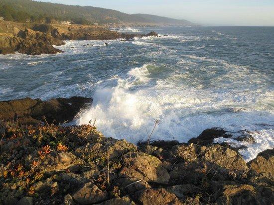 Sea Ranch Lodge : Scenic Pacific