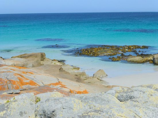 Pelican Point Sanctuary : Bay of Fires
