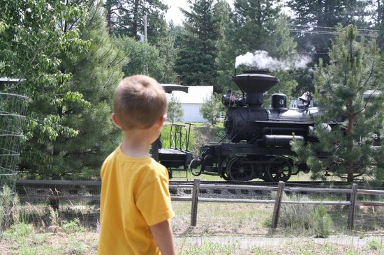 Sumpter Valley Railway: Sumpter Junction Wood burning Steam Locomotive