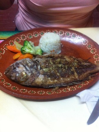 Fried fish picture of calypso s mexican restaurant for Fried fish restaurants