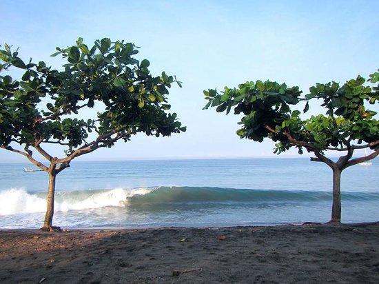 Sunset House Lombok: Beach