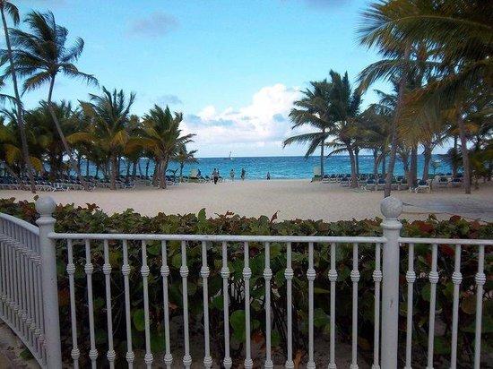 Hotel Riu Palace Punta Cana: hermosa vista abierta... gran catidad de reposeras y mozos recorriendo la playa constantemente