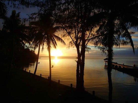Palau Pacific Resort: 部屋から