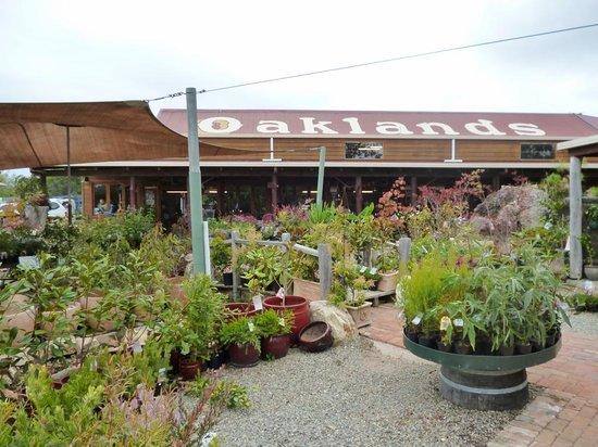 Oaklands Cafe: Nursery area