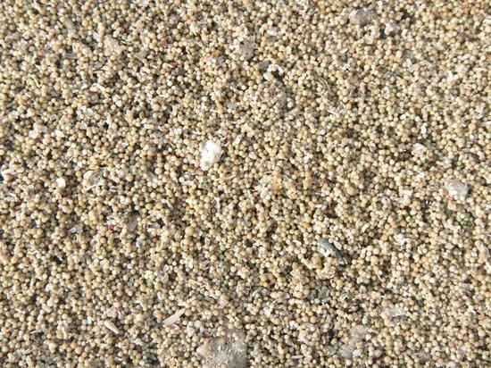 Novotel Lombok : White Pepper Sand