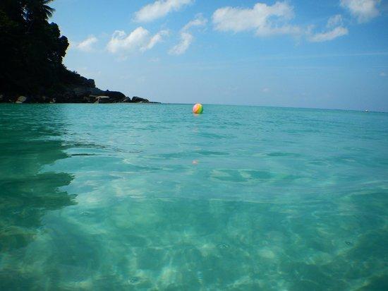 The Surin Phuket: Spectacular Ocean