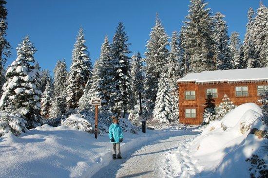 Wuksachi Lodge: Hotel