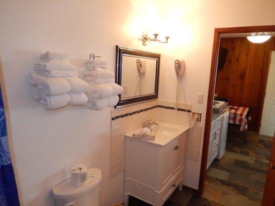 Cedar Motel: Bathroom