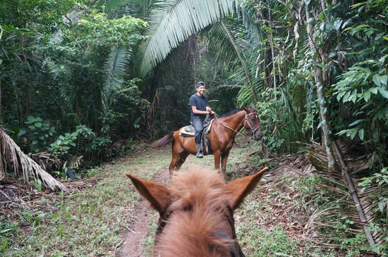 a2ebb31fdb3 Our Guide, Jose. - Picture of Outback Trails, Kendal - TripAdvisor