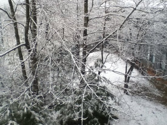 Unicoi State Park & Lodge : Beautiful snowfall out our window.