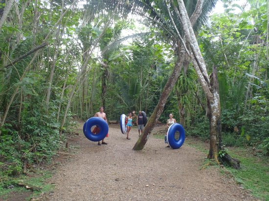 Cave Tubing R Us: The walk to the river, it takes about 25 minutes...I think, very enjoyable walk.