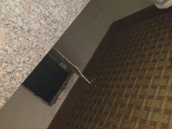 Red Roof Inn & Suites Anderson, SC: This is the hole my 7 year old found