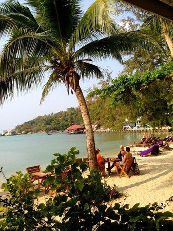 Sunshine Beach Resort: Пляж