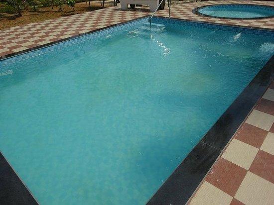 Marari Fishermen Village Beach Resort: murky pool