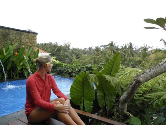 Ubud Green: Our private pool over looking the rice fields