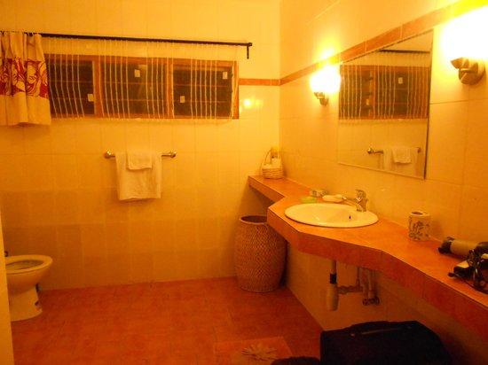 Aparthotel Jardin Tropical : Salle d'eau spacieuse et toute équipée