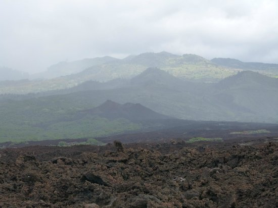 Holo Holo Private Taxi Tours: View of the lava beds and hills