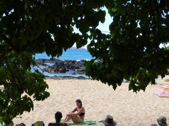 Holo Holo Private Taxi Tours: Maui beach