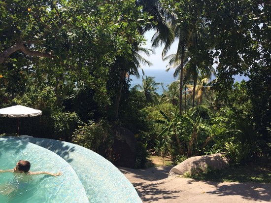 Monkey Flower Villas : Vue de notre villa