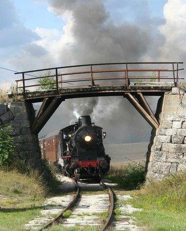 Modum Municipality, Noruega: Krøderbanen - historic steam engine