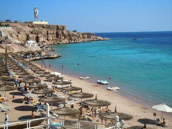 SENTIDO Reef Oasis Senses Resort : Beach on the Red Sea