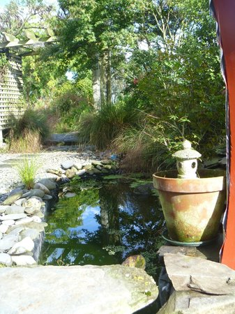 Ranui Retreat Bed and Breakfast: and beyond...