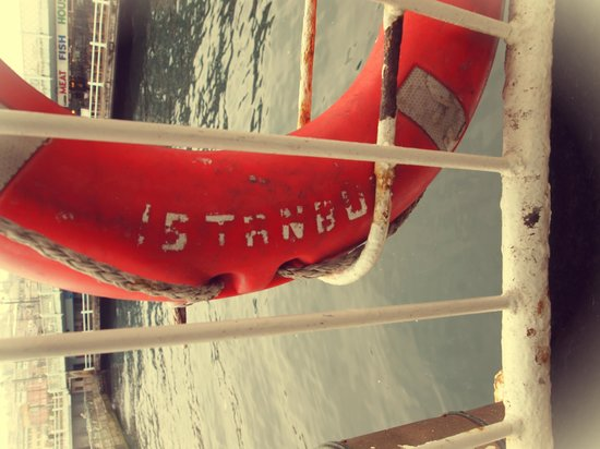Bosporus: safety and protection