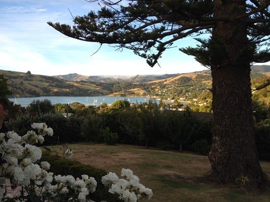 The view from the back door of Akaroa House