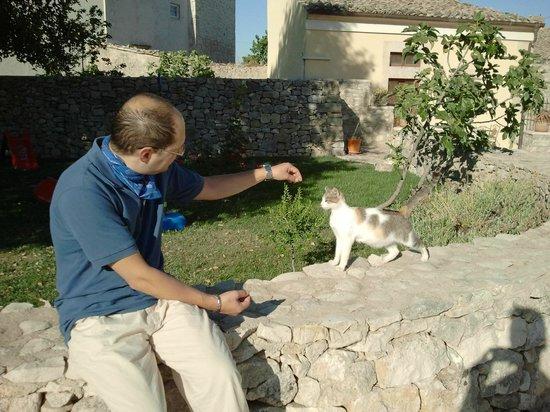 Artemisia Resort : IN GIARDINO CON UN GATTINO RAGUSANO