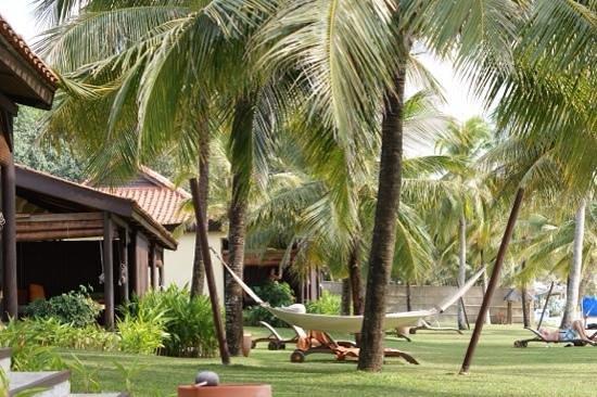 Chen Sea Resort & Spa Phu Quoc: espace de verdure devant villa beachfront
