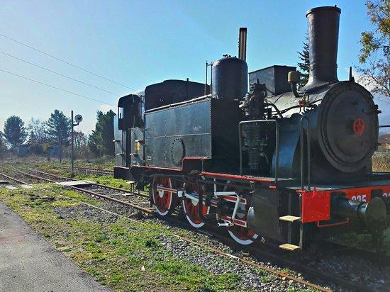 Locomotiva a vapore, regalata al comune di Polla, per i festeggiamenti del centenario della line