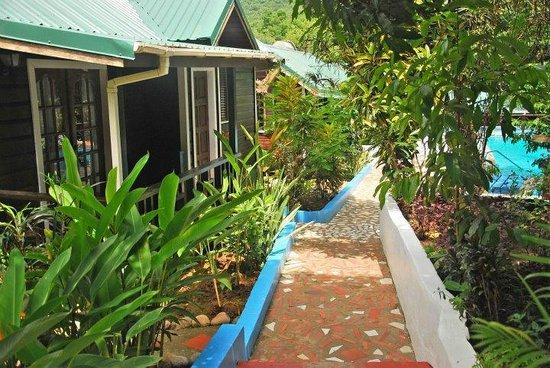 Ti kay kreole baie de marigot sainte lucie voir les tarifs et avis cottage tripadvisor - Les jardins de sainte lucie ...