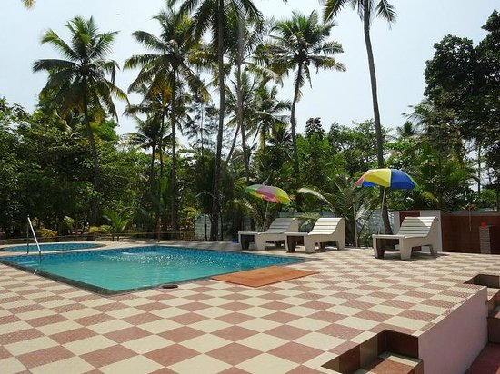Marari Fishermen Village Beach Resort: pool area