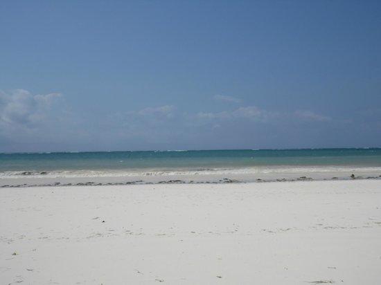 Diani Beachalets : beach again
