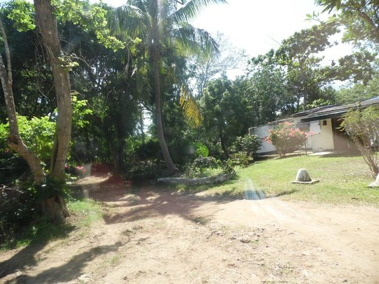 Diani Beachalets : grounds towards office